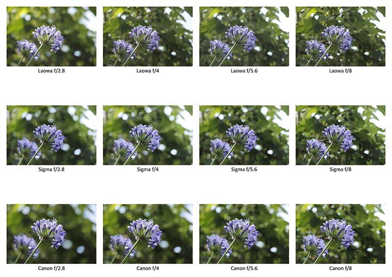 Vergelijk van de LAOWA met Sigma en Canon (klik op de foto voor een hoge resolutieversie).