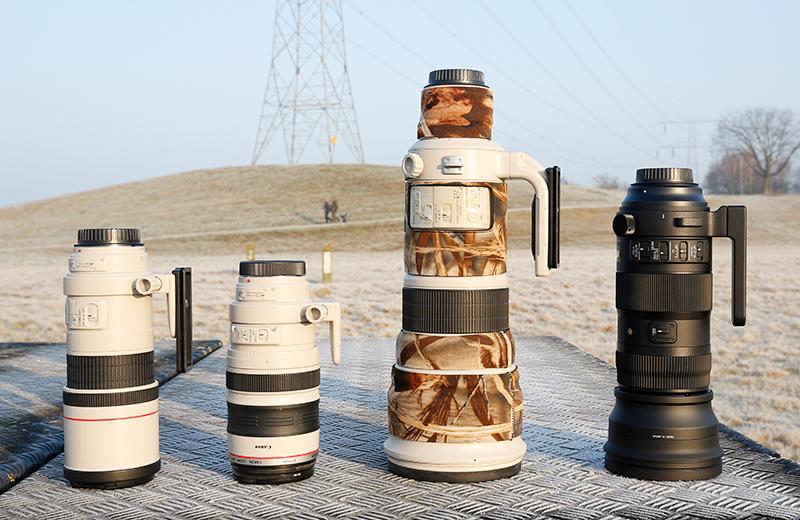 Van links naar rechts: Canon 300, Canon 100-400, Canon 500 en de Sigma 150-600.