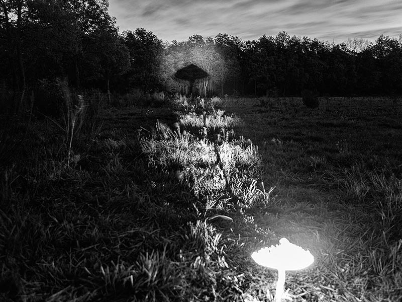 Een strakke bundel van licht maalt de foto mogelijk.