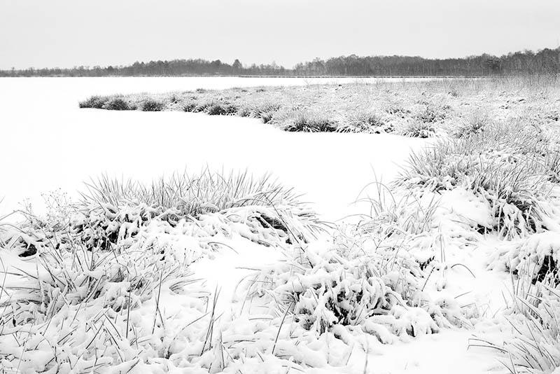 Peellandschap in zwart-wit.