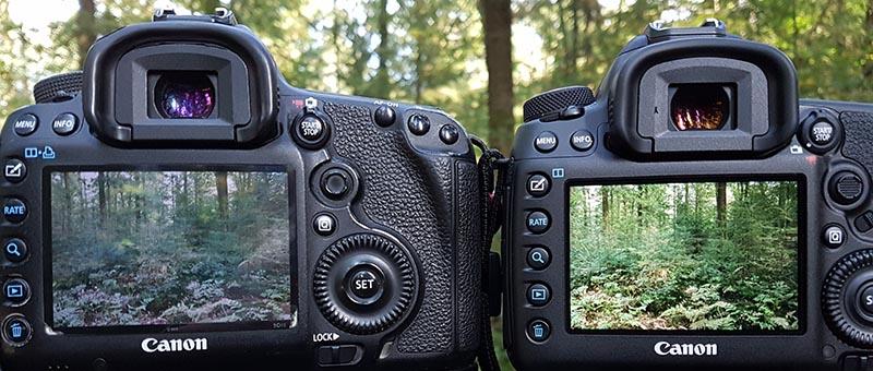 Scherm links is wat grauw (Canon 5D Mark III), rechts helder, maar te kleurrijk (Canon 5D Mark IV).