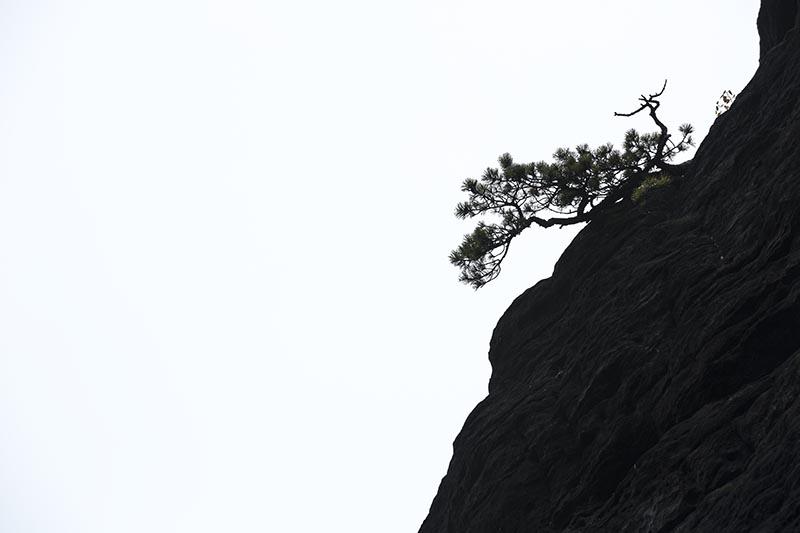 Een grijze dag, rotsen en een detail zorgen samen voor een leuke zoektocht naar silhouetten.