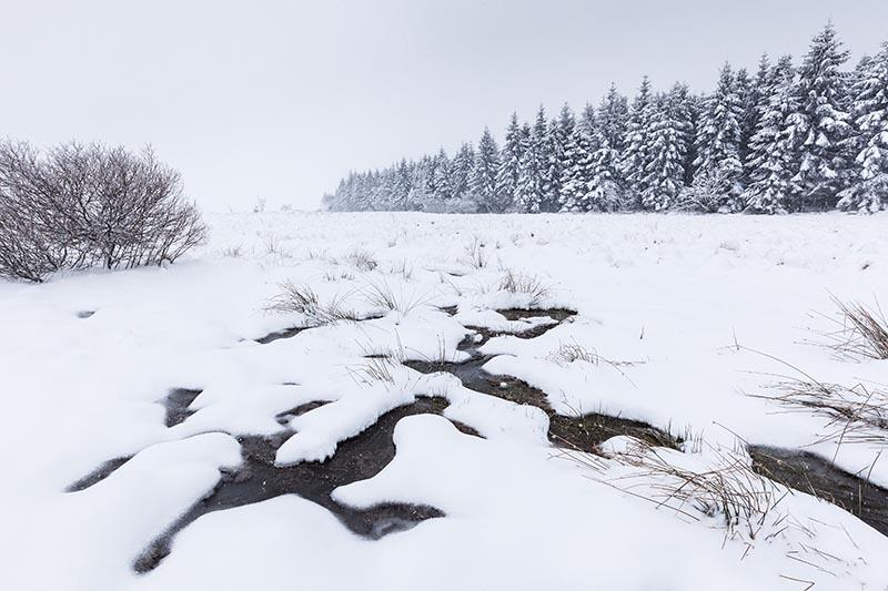 Maart: 2016 is het jaar van misschien wel de meest bizarre winter, of beter het gebrek daaraan. In maart lukt het dan toch kortstondig op de Hoge Venen met uiteindelijk zelfs een halve meter sneeuw!